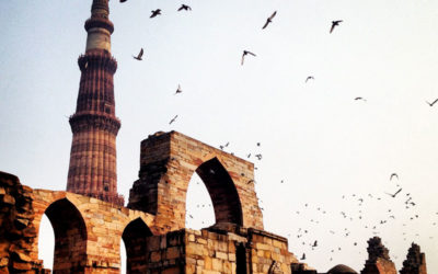 TRAVEL TIPS TO DELHI